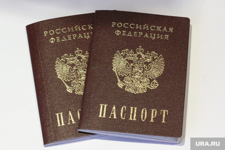 Названы сроки отмены паспортов в России
