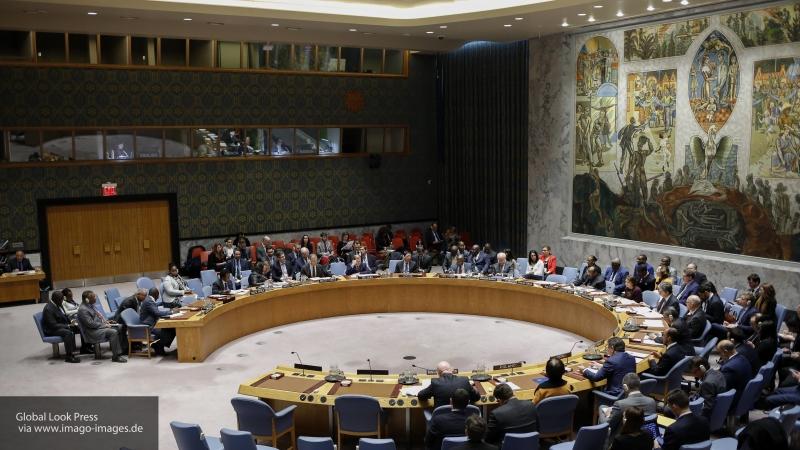 В Госдуме назвали неприемлемой позицию США в СБ ООН по операции против курдских боевиков