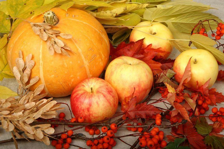 Открытки осень урожай, годовщиной