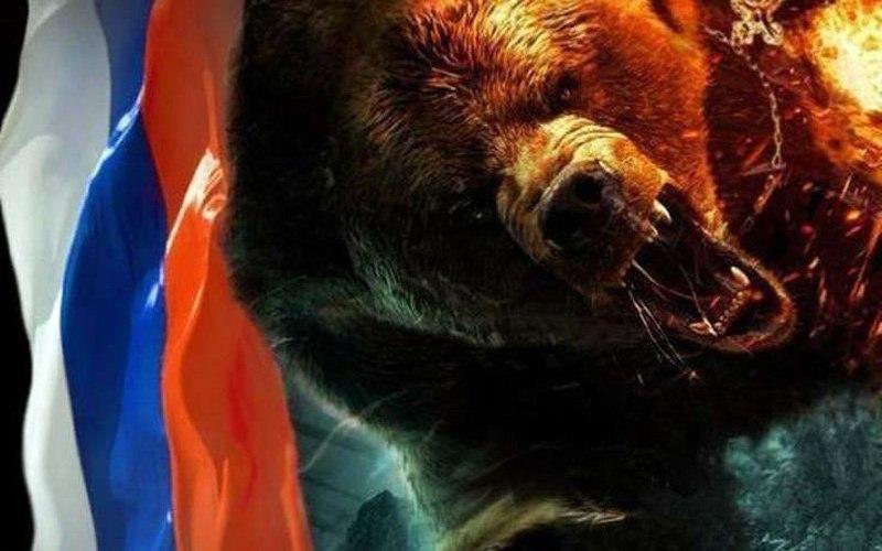 картинка медведь флаг россии обои садоводы рекомендуют проводить