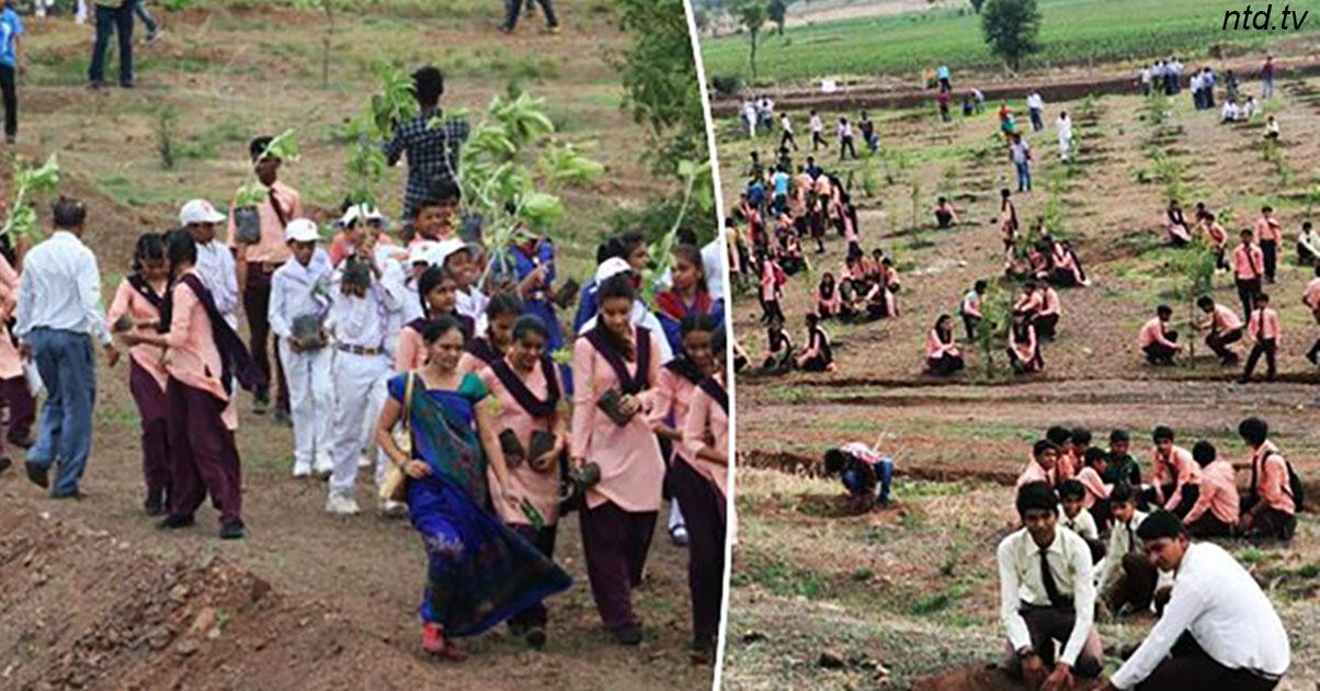 1,5 миллиона индийцев поÑадили 66 млн деревьев за 12 чаÑов - и побили рекорд!
