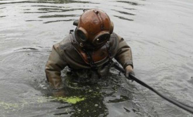 Превращение мутного болота в чистое озеро: энтузиасты решились на эксперимент и сняли работу на видео