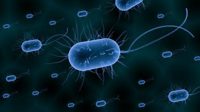 Страшные бактерии, которые н…