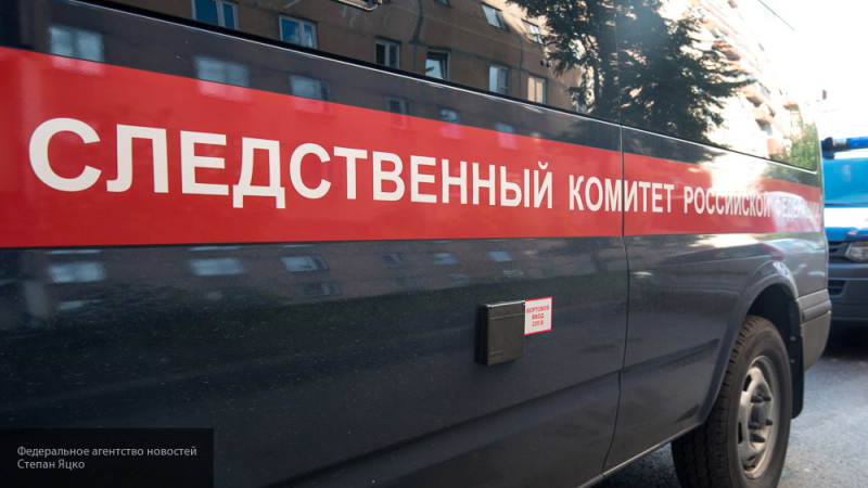 В СК РФ рассказали, почему банду ГТА было так тяжело вычислить