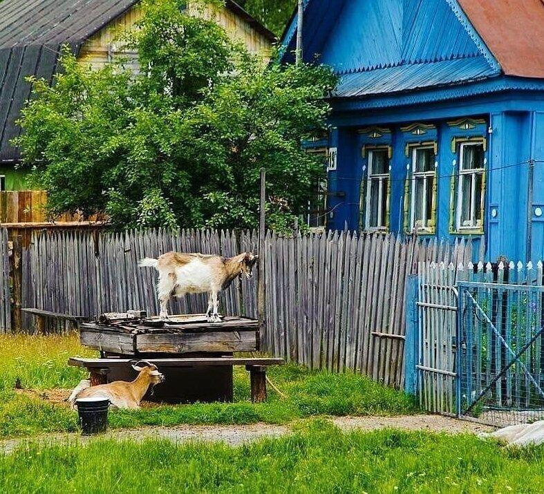 посередине деревенские воспоминания фото роспись сделана