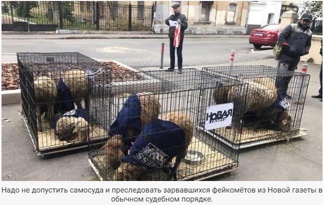 Александр Роджерс: «Новую газету» пора тащить в суд