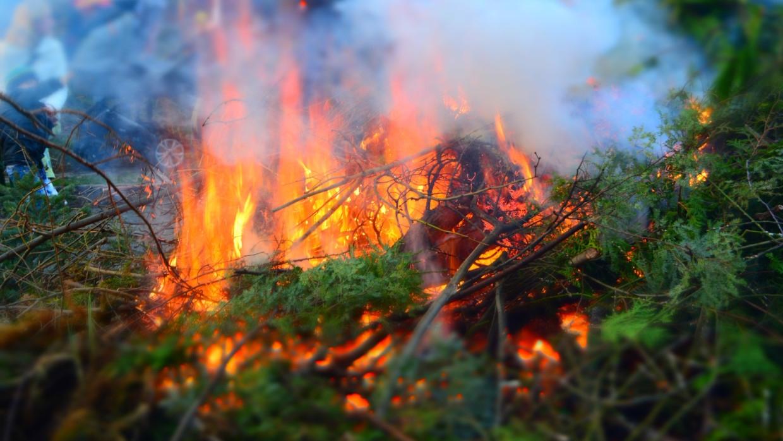 Пожарные локализовали возгорания на площади 14 тыс. га в Челябинской области Происшествия