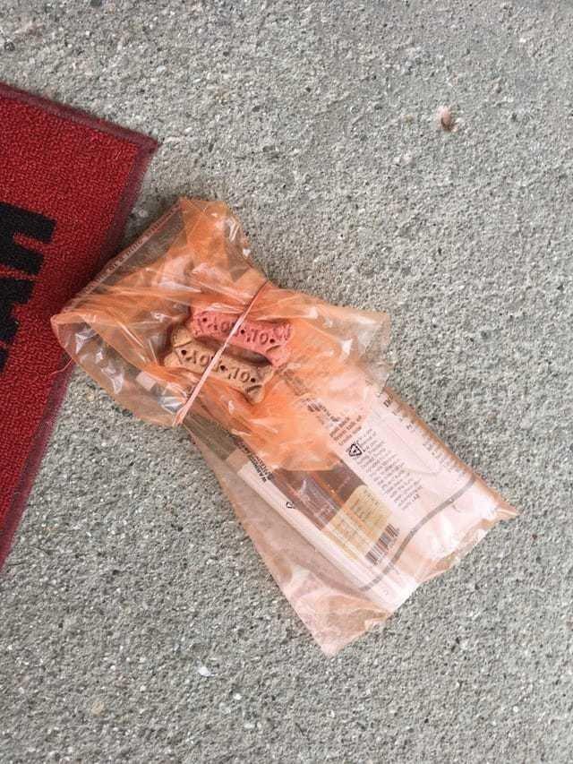 5. Этот почтальон давно знает свой маршрут, поэтому прикладывает к посылкам вкусняшки для собак адресатов. Ему не сложно, а пёсикам приятно! в мире, добро, истории, люди, позитив, фото