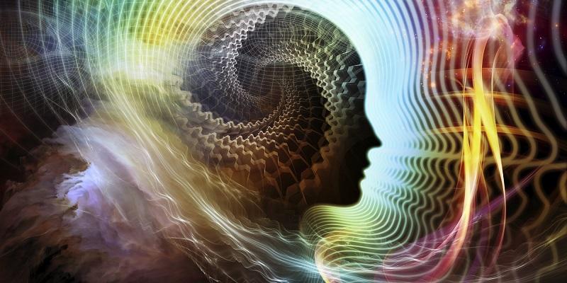 В организме человека обнаружен «второй мозг»