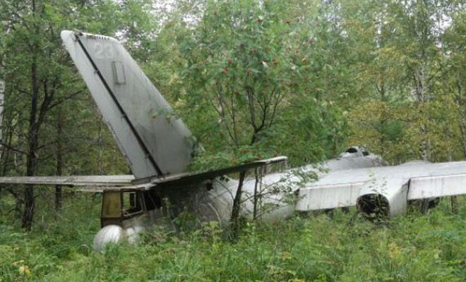 Самолет-призрак из леса: находка грибника, которой 70 лет Культура