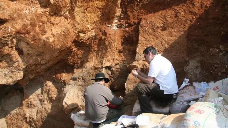 Фрагменты древних лакированных изделий обнаружили на востоке Китая Технологии