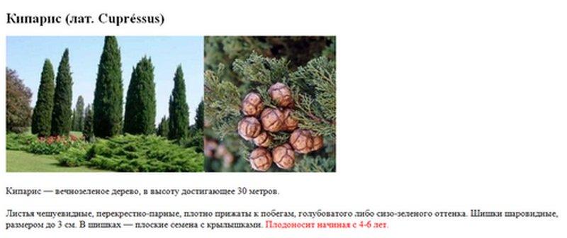 Подражание древним.  К. Н. Батюшков