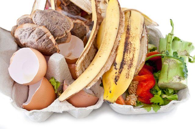Миф о скорлупе и кожуре. Можно ли пищевых отходов получить удобрение?