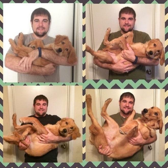 Хозяин держит собаку