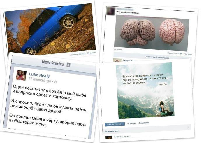 Смешные комментарии из социальных сетей (6 фото)