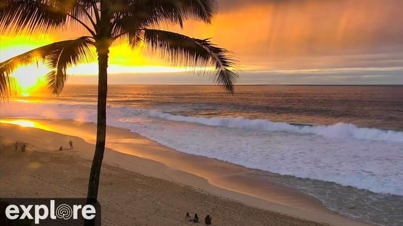 От Сочи до Патайи: онлайн-трансляции с курортов мира
