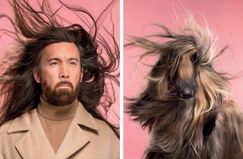 Фотограф сделал забавную серию снимков, в которой наглядно показал сходство собак и их хозяев