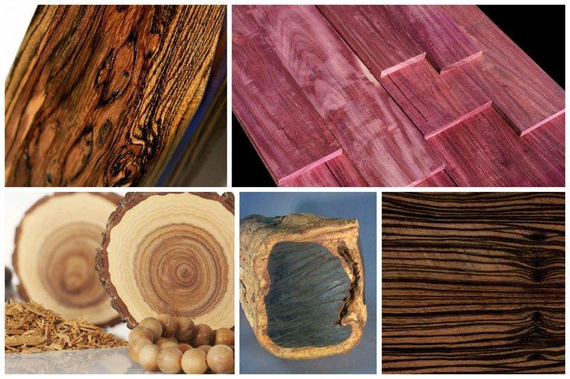 Вот еще дорогущие экзоты - бокота, амарант, сандаловое дерево, эбеновое дерево - Буратино из этих поленьев будет стоить почти как Боинг... деревья, древесина, интересное, природа, факты