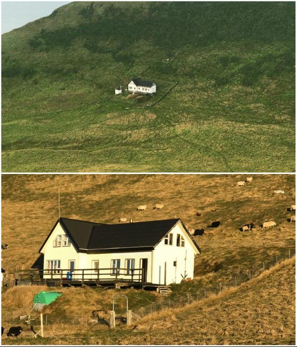 Интригующая история одинокого дома на необитаемом острове Исландии оЭдлидаэй, Эдлидаэй, остров, острова, можно, место, островов, только, обнаружен, Vestmannaeyjar, просто, время, который, могут, которые, ИсландияНа, домик, просторах, попасть, архипелага