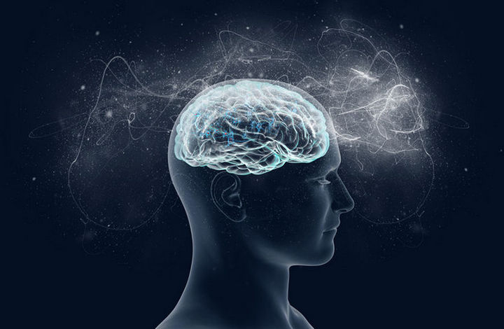 7 малоизвестных необычных фактов о мозге