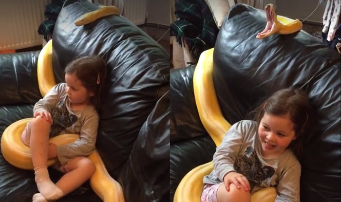 12-метровая змея смотрит ТВ вместе с девочкой