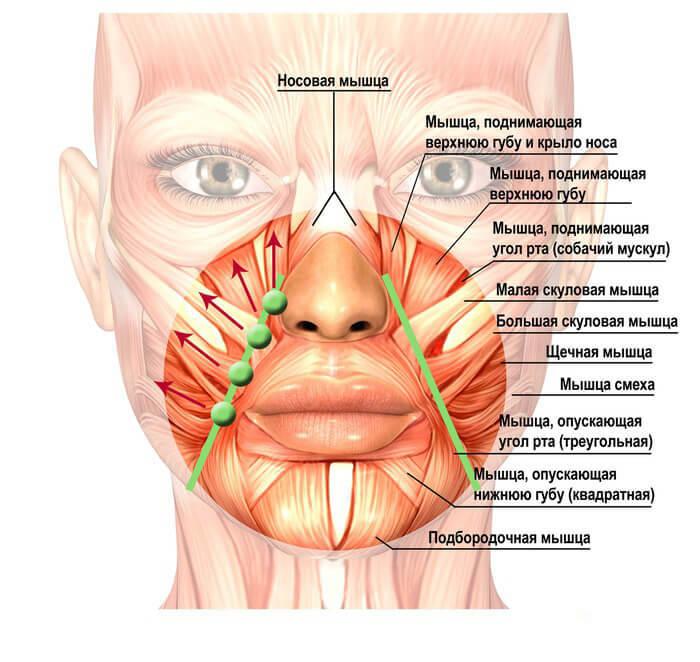 Упражнение «Ластик»: СТИРАЕМ складки «скорби» с лица!