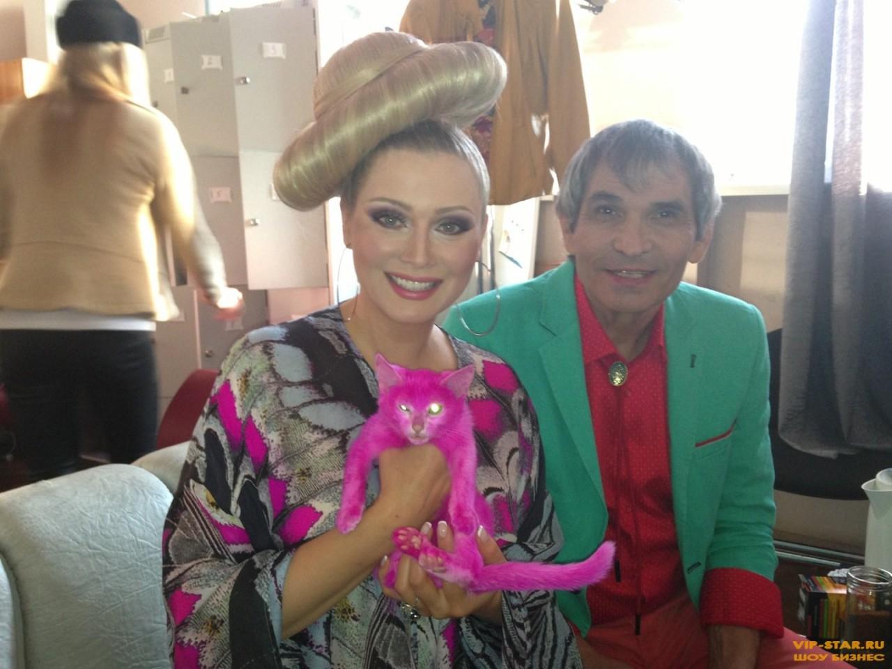 Скандал с розовым котенком Лениной обрастает подробностями