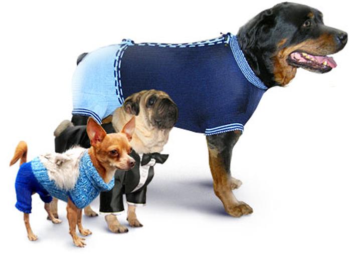 вязаная одежда для собачек выкройки и схемы вязания