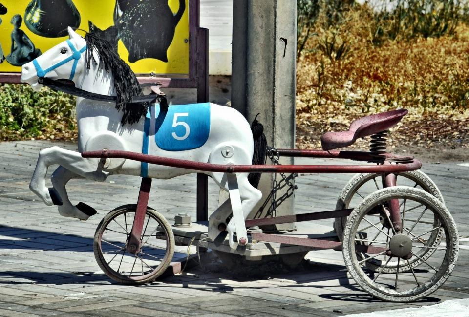 """Астрахань приводит к порядку """"лошадников""""."""