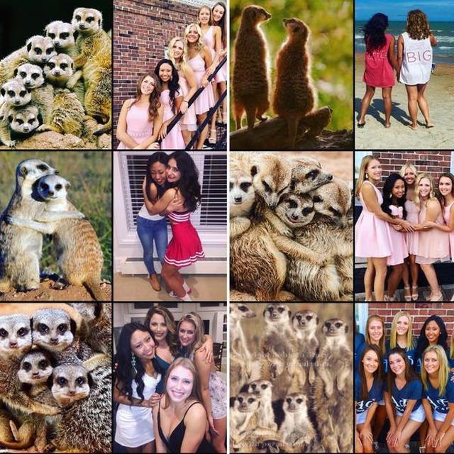 Классные фото приколы и зачетные картинки из нашей жизни прикольные картинки,угарные фотки,фото приколы