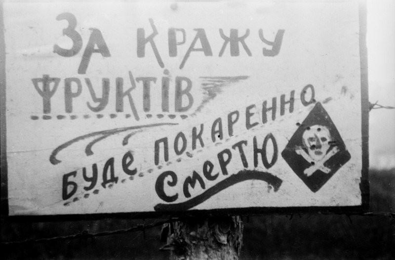 Украине, 1943 год история, события, фото