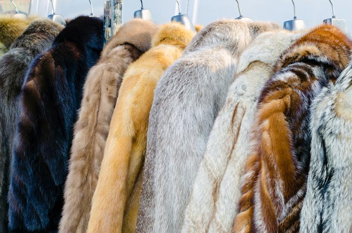 Модный мех 2017-2018: цвет, фасоны, детали