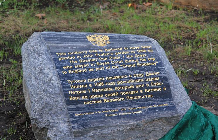 В Лондоне поставили памятный камень у дерева, посаженного царем Петром I