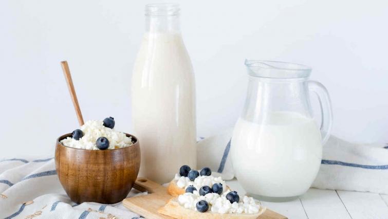 Малоизвестные факты о молочных продуктах