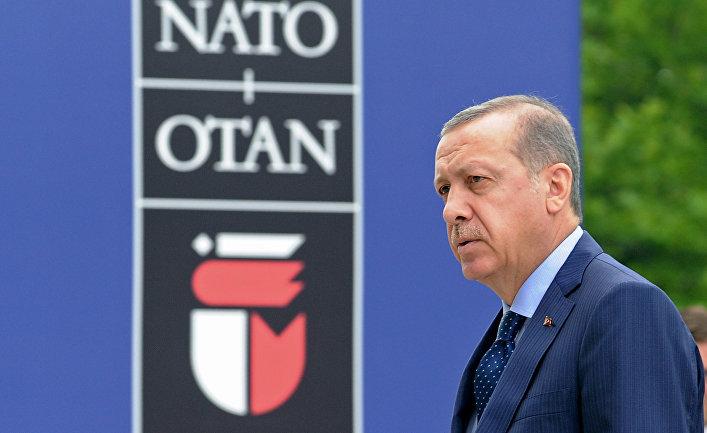 WP: Турция заблокировала решение НАТО о нанесении военного удара по Белоруссии