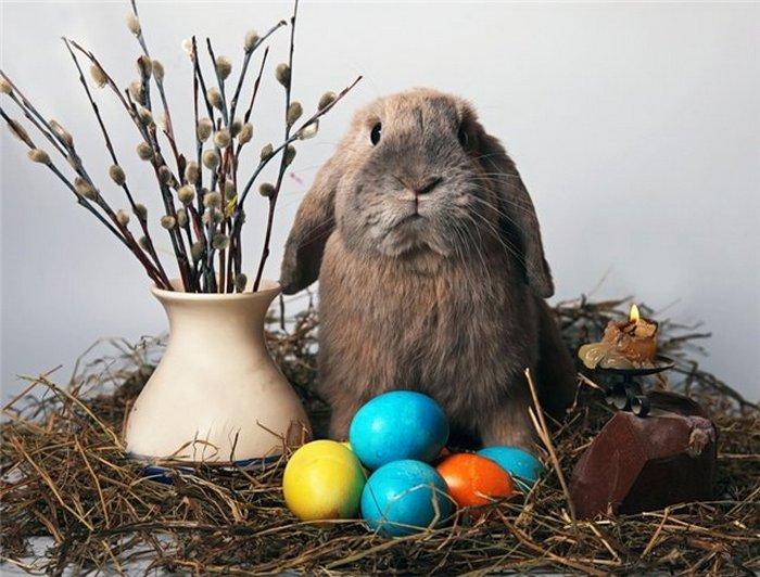 Не яйцами едиными: 10 пасхальных традиций со всего мира чтобы, время, которые, пасхальные, Пасха, многих, пасхальный, пасхальное, кролик, также, воскресенье, традиция, традиции, колокола, когда, менее, отпраздновать, символ, после, Пасхи