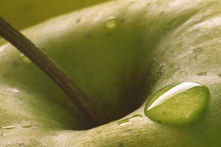 Можно ли мыть фрукты и овощи с содой?