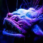 В США выкинутые на берег останки морского существа приняли за труп древнего чудовища
