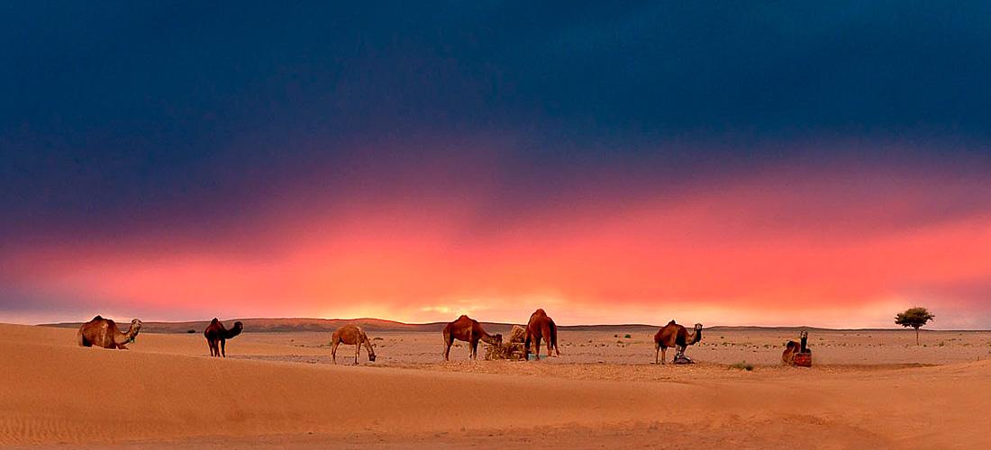 Что посмотреть и где побывать в Марокко