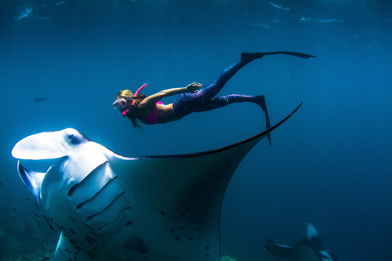 Гигантский морской дьявол