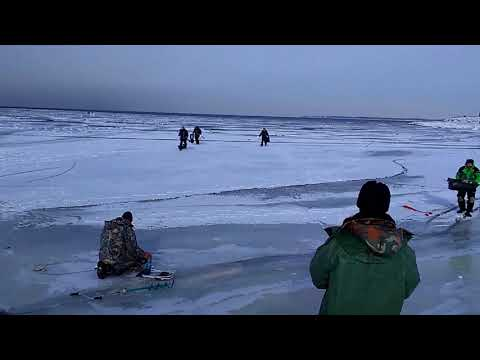"""""""Еле ноги унесли"""". В Петербурге рыбаки едва не ушли под лёд из-за волны"""