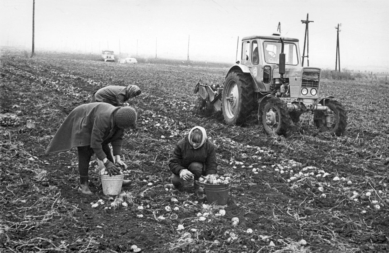 фото колхозников ссср