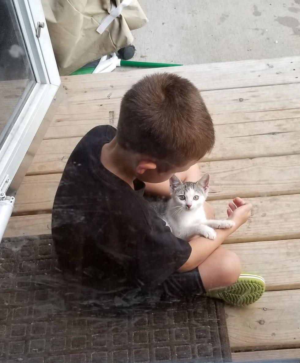 мальчик играет с котенком
