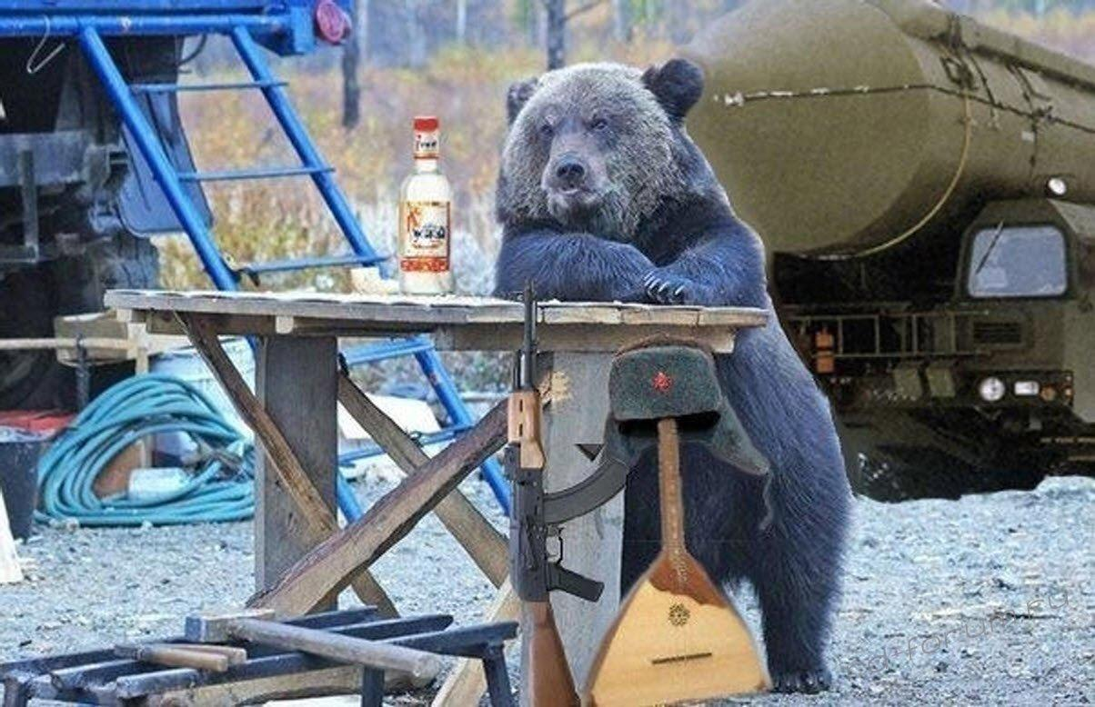 Картинки медведя с водкой