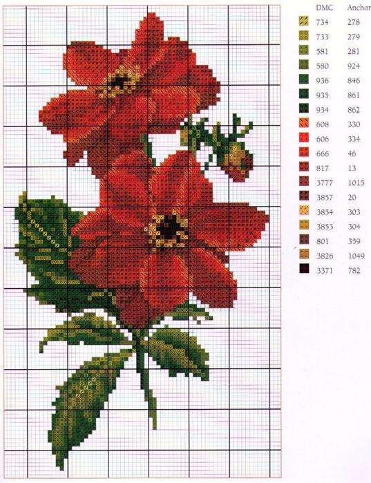 схема-вышивки (3) (537x700, 543Kb)