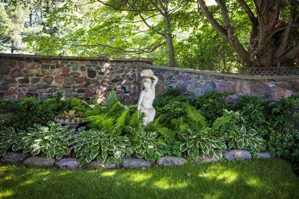 Огород в тени или полутении: растения и культуры, которые можно посадить за домом, забором