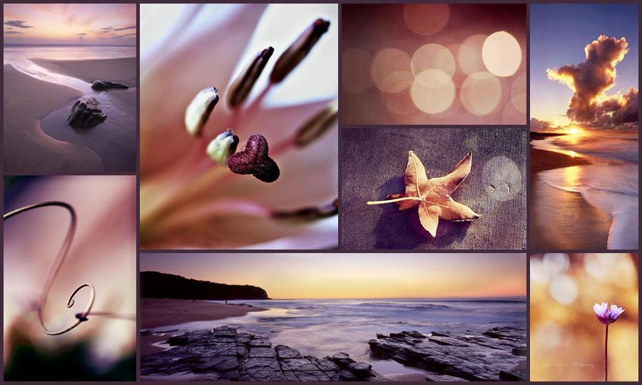подборка фотографий по цвету и теме для