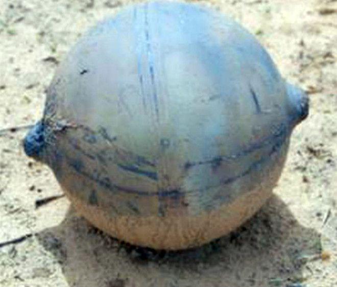 Космический мусор в Намибии