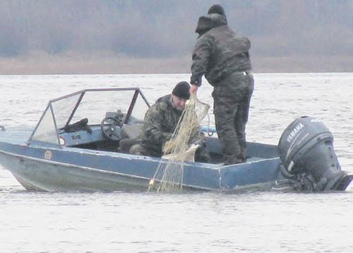 О рыбных запасах устами браконьера