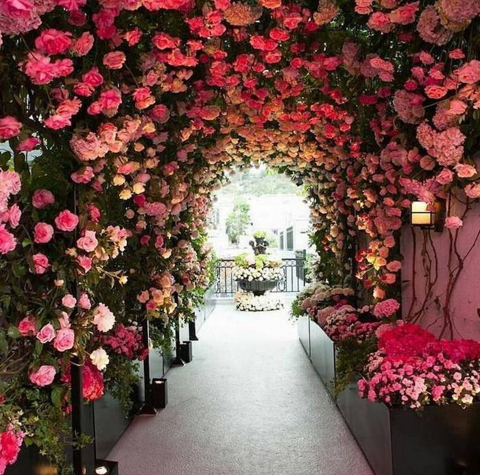 Цветочный тоннель. Беверли Хиллз, Калифорния, США.